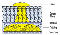 urine-spreads-diagram